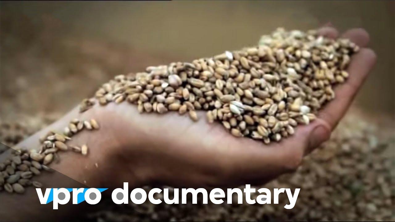 Документальные фильмы про биржу